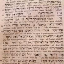 hebräsich